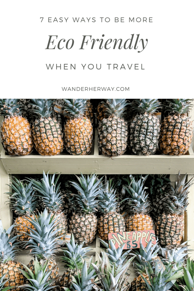 Tips for Eco Friendly Travel
