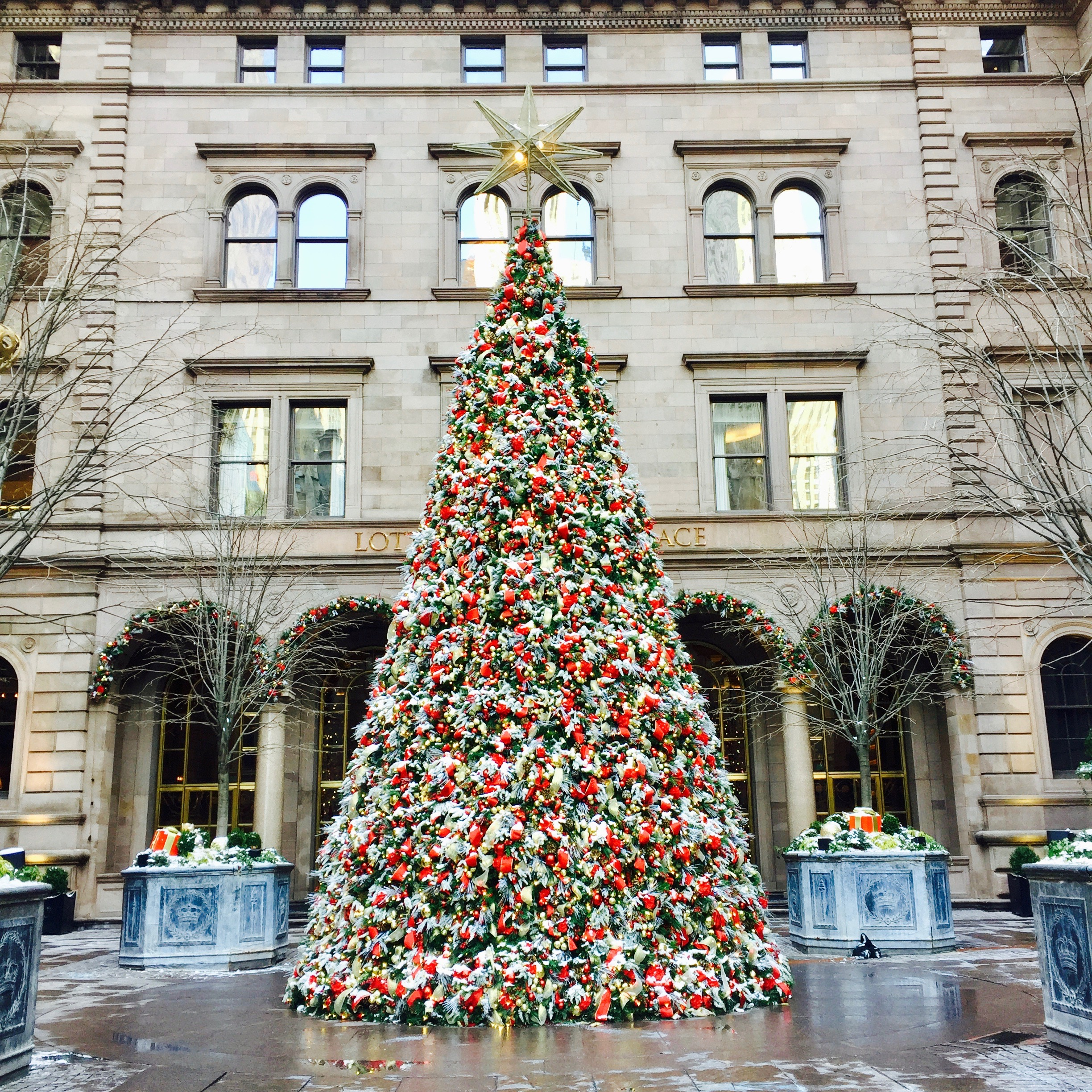 15 Magical Things to Do in New York at Christmas