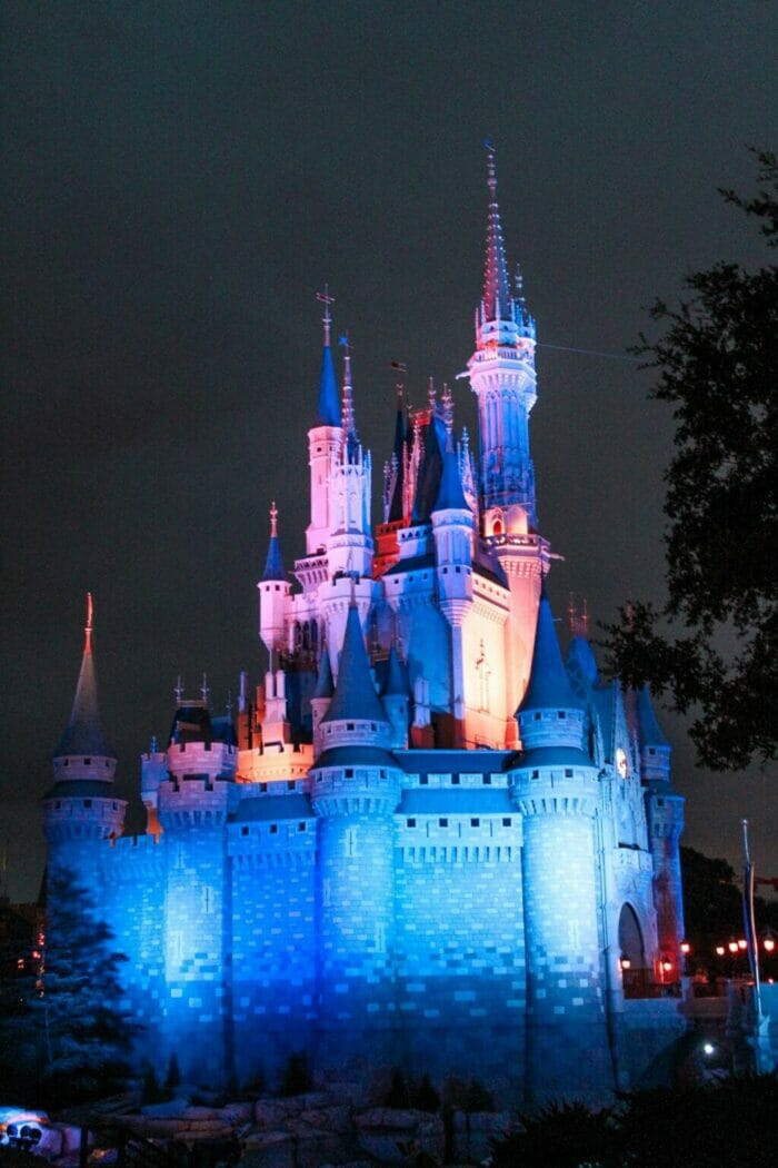 Disney After Hours Review: Is It Worth the Money?