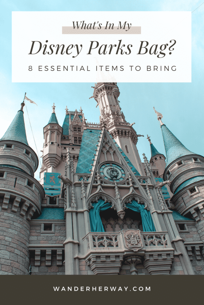 What's In My Disney Parks Bag?