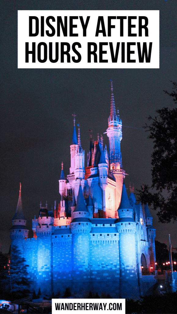 Disney After Hours Review Is It Worth It