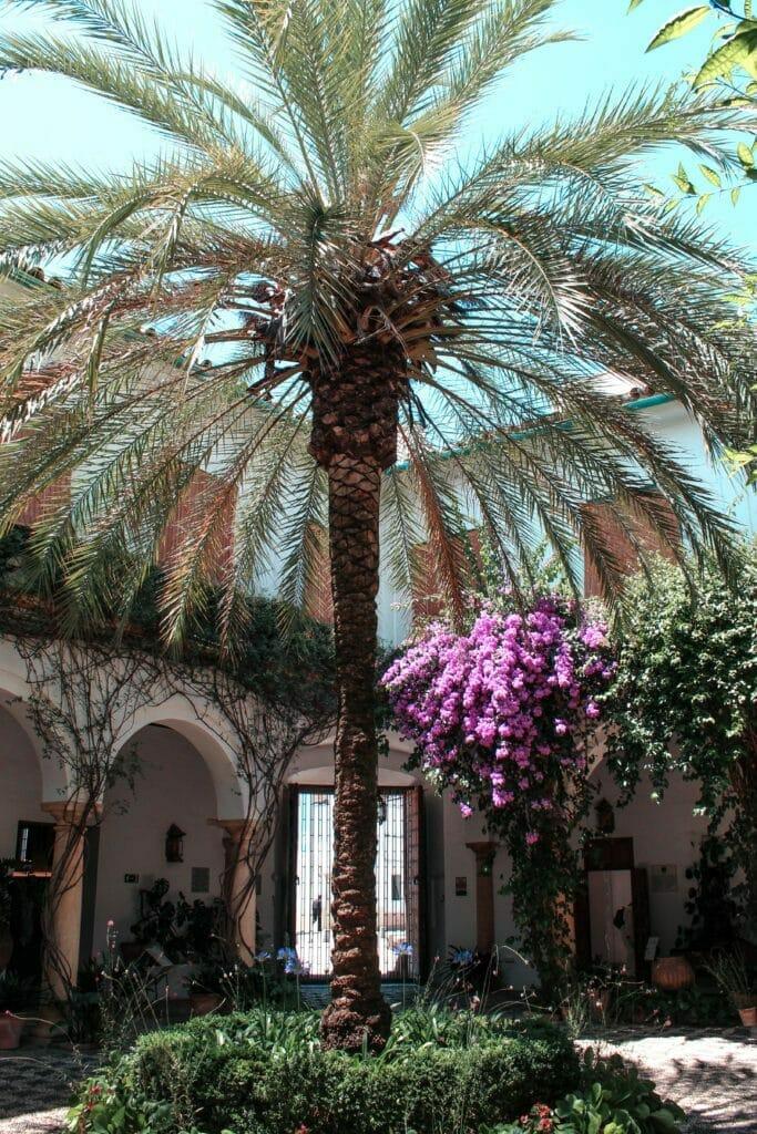 One Day in Cordoba, Spain